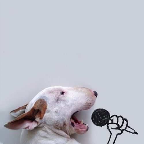 Rafael_Mantesso_Creates_Playfull_Illustrations_Around_His_Bull_Terrier_2014_02