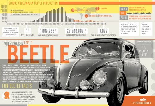 beetle-infographic