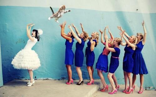 bridesthrowingcats-0