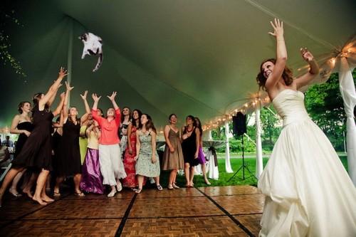 bridesthrowingcats-1