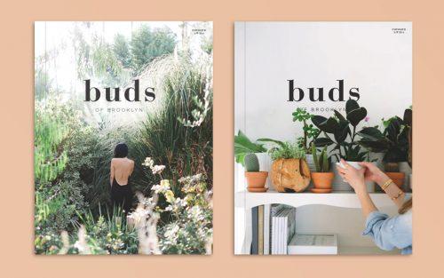buds-of-brooklyn-4