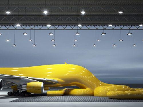 flight-intestine-2