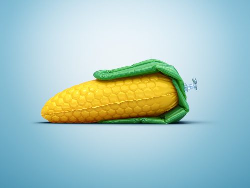 inflatable-vegetables-1