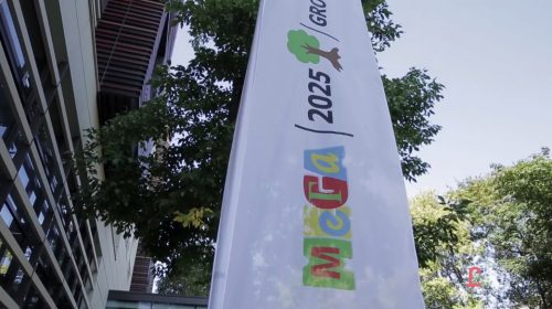 mega-strategy-2025-1