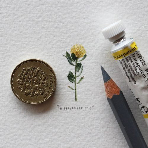 postcards-for-ants-3