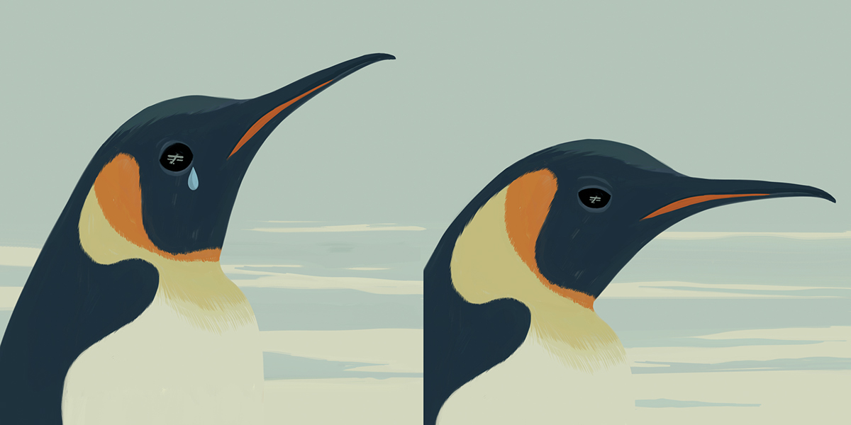 the-journey-of-the-pinguin-3
