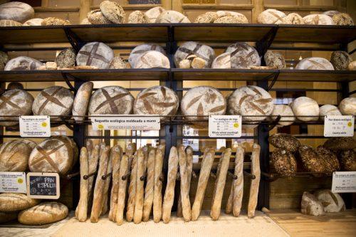 variedad-de-panes